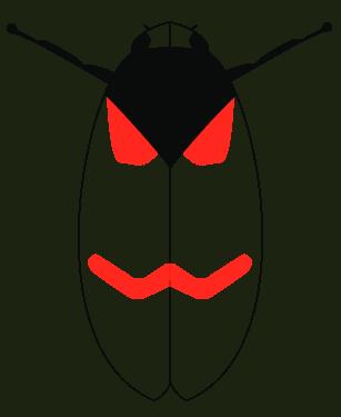 Cercopis arcuata